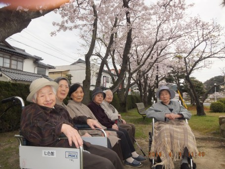 グループ七色間で大田市民会館へのお花見